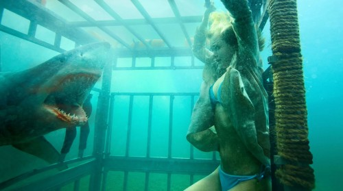 Shark Night 3D: Sara Paxton